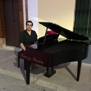 piano-fuente-palmera
