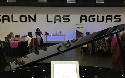 Salón de las Aguas del Viso de Córdoba